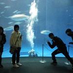 名古屋港水族館  23年度3月卒業旅行