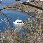 Die Tagus-Bucht auf Isabela - Kreuzfahrt im Galápagos Nationalpark