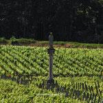 Vierge-des-vignes-Fixin