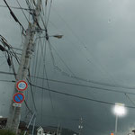 ぽつぽつ雨が降ってきた、この後ドシャー!!降りました。