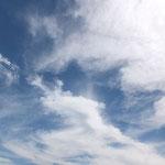 しっかり白い巻雲。とっても爽やかな感じ。