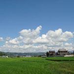 のどかでしょ~^^ 田んぼの緑と白い雲に青い空。好きな光景です。