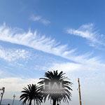 飛行機雲からの片側 肋骨雲 綺麗だ!!