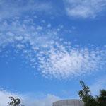 巻積雲 いわし雲だね~^^綺麗だ~!!
