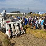コンバインを使った稲刈りも体験