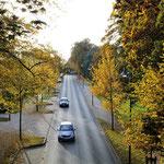 Elmstraße