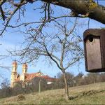 Blick auf den Schönenberg, Foto: NABU Ellwangen/Peter Wolf