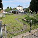 Biologische Station Rhein-Sieg-Kreis