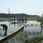 田んぼに水を張った「第2ビオトープ」