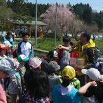 栃木県立博物館の林さんから、カエルなどの説明。