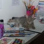 L'atelier et le chat