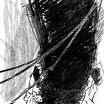 桐野夏生「猿の見る夢」29-1 週刊現代(講談社) 2014