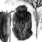 桐野夏生「猿の見る夢」41-2 週刊現代(講談社) 2014