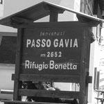 Gavia-Pass