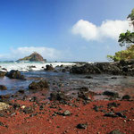 http://newsletter.kendiritasafaris.co.ke/april-newsletterbeautiful-hidden-beaches-2013-04-30/
