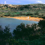http://www.pardicourt.com/aboutgozo.html