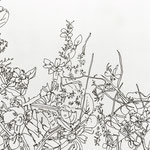06-19-18 (Grass in backyard), ink on paper, 5.5 x 8 inches