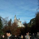 Schloss Neuschwanstein von Marienbrücke