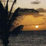 Karibik | Sonnenuntergang auf Jamaika