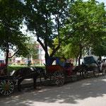 El coche, típico medio de transporte en nuestra ciudad
