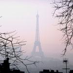Paris, 29.12.2008