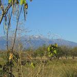 El Moncayo desde el camino de Sopez