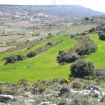 Santuario de la Misericordia (paisaje)