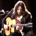 Gitarrist Harri Stojka, Gipsy-Soul, Jazz