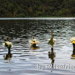 Opfer der Mayas in der Laguna di Chichabal