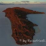 Insel Inkuahuasi auf dem Salar de Uyuni