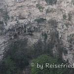Papagaienschlucht nahe bei Tuxla Gutiéres