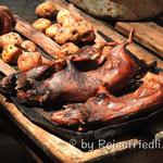 Peruanische Spezialität : Meerschweinchen