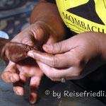 Zigarren-Herstellung