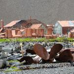 Verlassene Walstation in Stromness