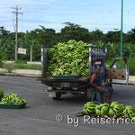 Bananen-Verkauf