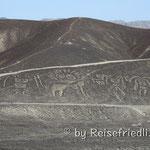 Palpa Lines in der Nähe von Nasch