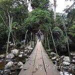 Tarzansbrücke in der Nähe von Parat