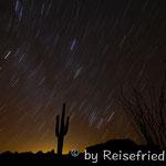 Sonora- Wüste bei Nacht
