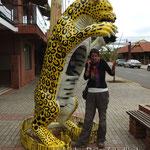 Hallo Jaguar, wo bist du?