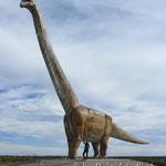 Dinosaurier bei Trelew