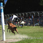 Rodeo am Kirschenfest