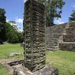Steelen bei den Ruinen von Copán
