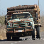 Transportmittel auf Mexikos Strassen