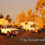Campen mit Freunden