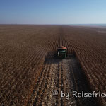 Unterwegs in der Kornkammer Brasiliens
