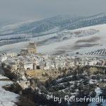 Olivenplantagen im Schnee
