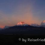 Chimborazo im Abendlicht
