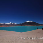 Laguna Verde auf 4300MüM