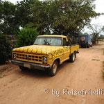 Biene und Friedli in Rosaleda