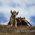 Peruanische Figuren zum Schutz auf den Häusern